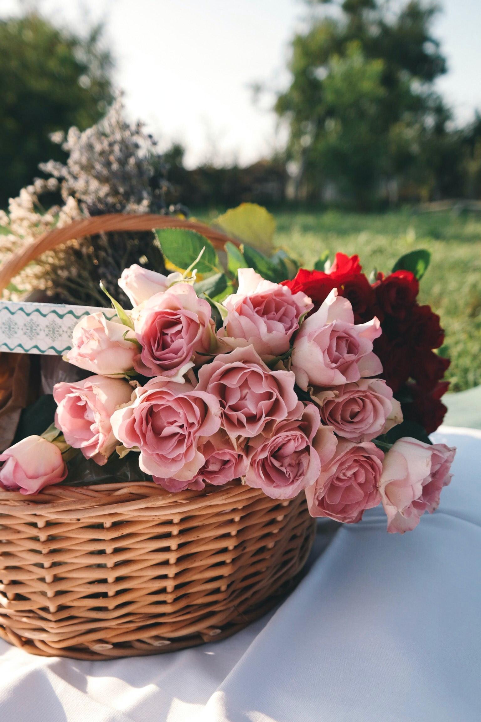 Benefits Of Applying Rose Water To Facial Skin